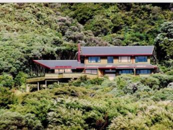 Photo of Buffalo Lodge Coromandel