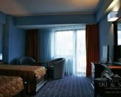 Photo of Hotel Ski & Sky Predeal