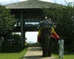 Elephant Corridor Hotel