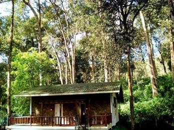 Greenspaces B&B Munnar