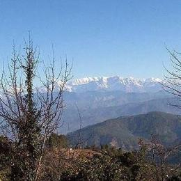 Photo of Suman Royal Resort Kausani
