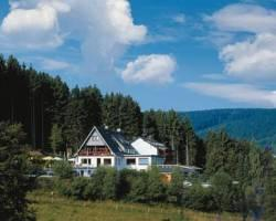 Wald Hotel Willingen