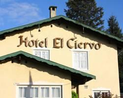 Photo of Hotel El Ciervo Villarrica
