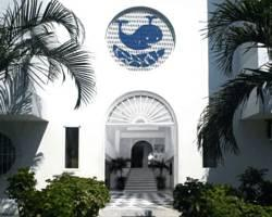 Photo of Hotel La Ballena Azul Santa Marta