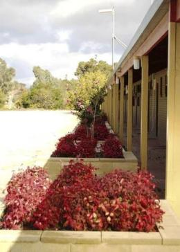 Country Inn Cobram Barooga Golf Club Motel