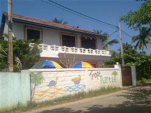 Tropi Turtle Guesthouse