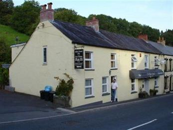 Afon Duad Inn