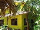 ‪Tamarindo Backpackers‬