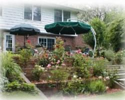 Dorchester House Bed and Breakfast