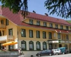 Photo of Vital-Hotel Gruener Baum Todtnau