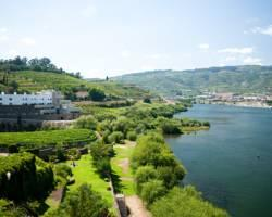 Douro River Hotel & Spa