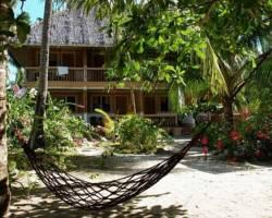 Photo of Hippocampus Beach Resort Malapascua
