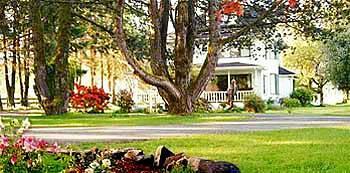 Photo of Miller Tree Inn Bed & Breakfast Forks