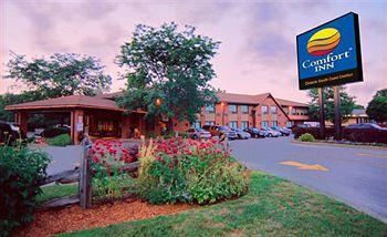 Comfort Inn Simcoe