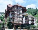 Hotel Hirsch