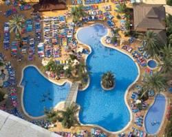 Photo of Flamingo Oasis Benidorm