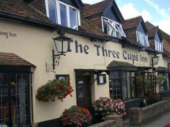 ‪The Three Cups Inn‬