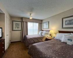 Homewood Suites Hartford/Windsor Locks