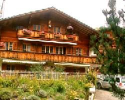 Chalet Alpendohle