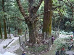 Mt. Lushan National Park