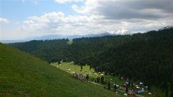 Mt. Tianshan Mountain Forest Park of Hami