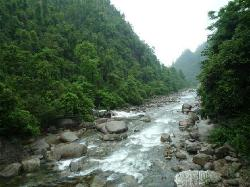 Chenzhou Mang Mountain National Forest Park