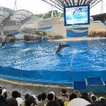 Farglory Ocean Park