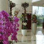 Jiashang Huiting Apartment Hotel의 사진