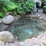 Photo of Jinhong Garden Hotspring Hotel