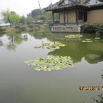 Taihu Yuantouzhu Scenic