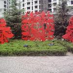 Weifang People's Park Foto