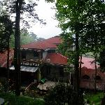 Lushan Nature International Youth Hostel Foto