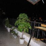 Foto Sanya Raintree Backpacker Hostel