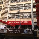 Red Palm Hostel resmi