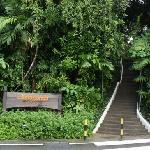 Hostel Costa Sands Resort (Sentosa) resmi