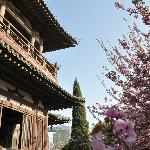 Photo of Qinglong Temple of Xi'an