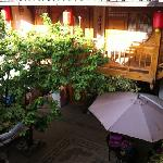 Foto A Tree Hostel Lijiang