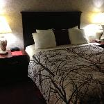 Фотография BEST WESTERN PLUS Wynwood Hotel & Suites