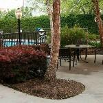 Φωτογραφία: Staybridge Suites Houston Stafford