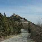 Photo of Baiwang Mountain Forest Park