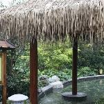 Mingyue Mountain Tianmu Hotspring Resort resmi