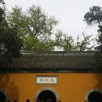 Photo of Daming Temple
