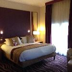 Φωτογραφία: Crowne Plaza Toulouse
