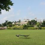 Photo de Laxmi Vilas Palace Hotel