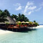 Vilu Reef Beach & Spa Resort Foto