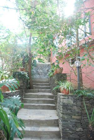 Bandipur bed and breakfasts