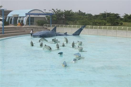 ??? - Picture of National Museum of Marine Biology and Aquarium ...