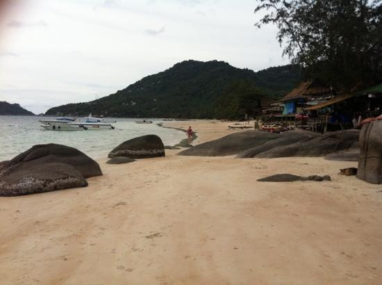 Koh Tao Heights Boutique Villas: beach