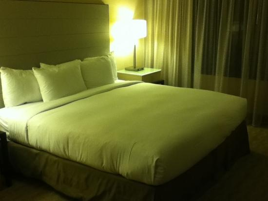 Hilton Los Angeles Airport: 机场希尔顿