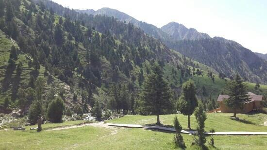Halihatu Virgin Forest Tourist Area